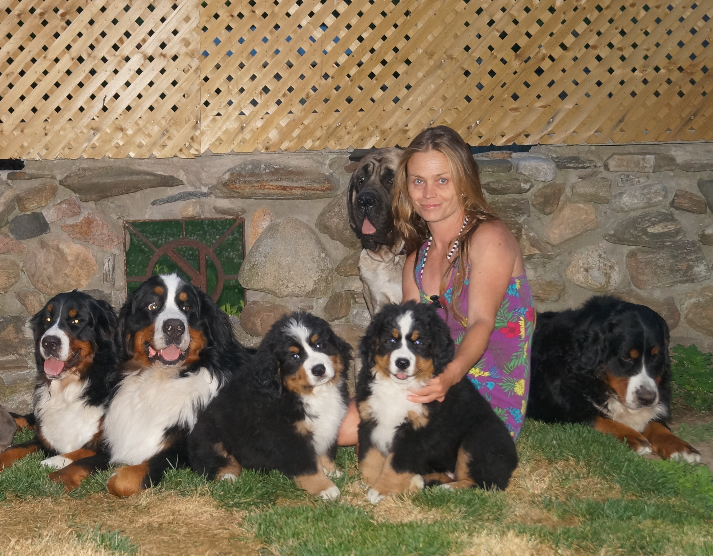 Last time together Aspen, Max, Jabel, Jasper and Lucy